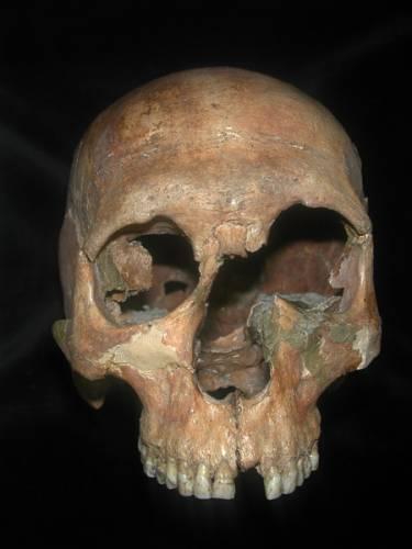 V Archeologickém ústavu AV ČR nepotřebují vždy rýče
