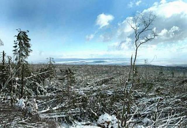 Ničivý vítr zdevastoval Vysoké Tatry