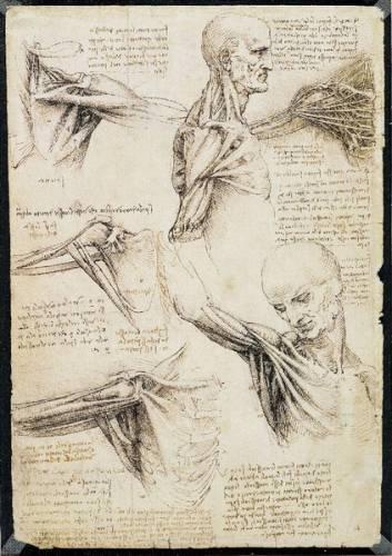 Lidské tělo od A do Ž