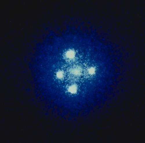 Kuriózní mikročočky