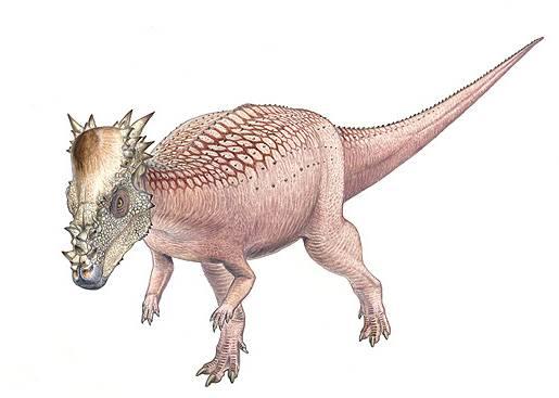 Nový druh dinosaura z Hell Creek