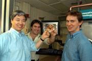 Nanogel na zastavení krvácení