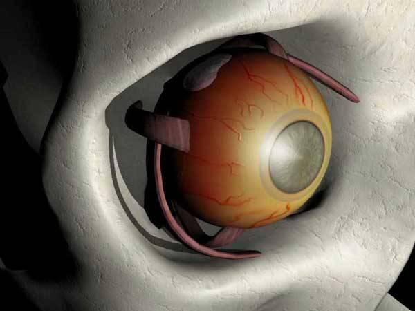 Svět obchází obava z onemocnění očí, které si zasedlo hlavně na oběti dříve narozené. Postihuje až třetinu lidí ve věku nad 65 let, u 90letých mu neunikne polovina! V ČR už dnes ohrožuje půl milionu lidí! Čerstvé vědecké poznatky však ukazují, že se už některým takovým hrozbám umíme bránit.