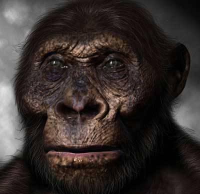 Příští rok tomu bude 150 let od chvíle, kdy Charles Darwin uveřejnil své stěžejní dílo O vzniku druhů přírodním výběrem, neboli uchováním prospěšných plemen v boji o život. Během této dlouhé doby se našla řada důkazů, které Darwinovu evoluční teorii podpořily. Ovšem, s vývojovou linií, která směřuje k člověku, je to poněkud zapeklité.