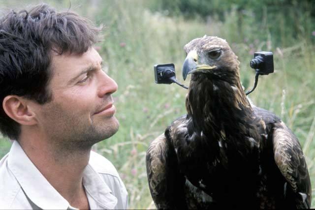 Připomínalo to zázrak, když lidé spatřili v provozu první filmovou či dokonce digitální kameru, uslyšeli rozhlasové vysílání, o významu radiolokátoru ani nemluvě. Stěží by se tenkrát někdo z badatelů nadál, že se kameramany a jakýmisi radiovými techniky stanou i jiní živočichové než člověk.