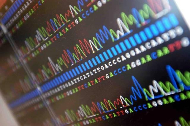 V současné době probíhá řada výzkumů, zaměřených na genetické testy, jimiž se dají odhalit i duševní poruchy. S jejich pomocí lze včas odhalit i takové choroby, jakou je bipolární porucha. Názory vědců na používání této diagnostické metody však nejsou jednotné.