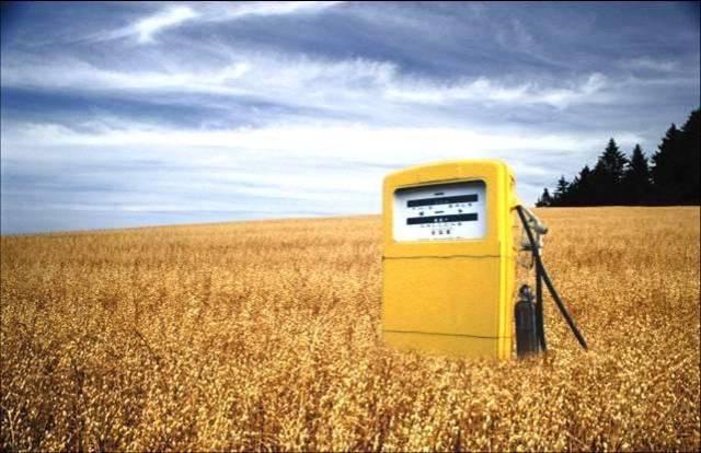 Hledání nových a obnovitelných zdrojů energie je už po celá desetiletí jednou z nejžhavějších oblastí výzkumu. Ve Spojených státech byl v nedávné době rozjet projekt, jehož cílem je najít takový způsob přípravy biopaliva, který by obešel rostlinnou fotosyntézu.