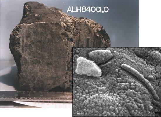 """Když v roce 1996 objevili vědci v Antarktidě zvláštní malý kus horniny, netušili, jak obrovsky významný nález se jim dostal do rukou.  Tento """"kámen"""" je totiž meteoritem, který má původ na Marsu. Odborníci z NASA, kteří jej nedávno znovu prozkoumali, tvrdí, že v něm objevili stopy po dávném životě."""