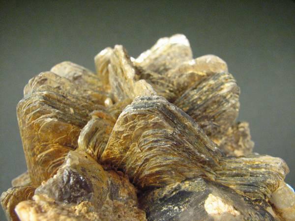 Který kluk nebo holčička si v dětství alespoň na chvíli nezaložili sbírku krásných kamenů? Většina na svou dětskou vášeň zapomene, další v dospělosti raději obdivují krásné kameny ve špercích. Profesionální geologové či mineralogové se však stanou jen z těch, kdo mají výjimečné vědecké nadání. Mohli byste se s nimi měřit?