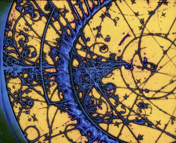 Objev nové elementární částice znamená ve světě fyziků vždy velkou senzaci. V jedné z největších fyzikálních laboratoří světa, americkém Fermilabu, byl možná nalezen důkaz pro existenci dříve neznámého čtvrtého typu neutrina. Tento objev by dokonce mohl fyzikům napomoci s vysvětlení temné hmoty.