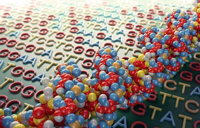 Pro mladou vědu o dědičné informaci jednotlivých organismů se už vžilo označení genomika. Podle tohoto »vzoru« se zrodil název pro nově vznikající vědní disciplinu, která se zajímá o bílkoviny jednotlivých pozemských organismů. Říkáme jí proteomika.
