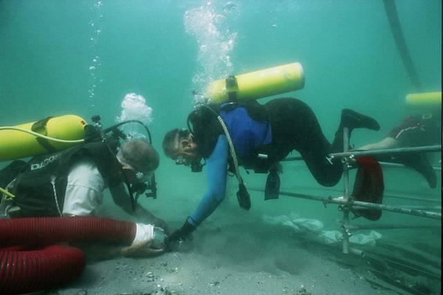 Z iniciativy norských archeologů vznikl projekt na záchranu památek, které jsou ukryty pod hladinou pobřežních vod. Pomalu a nenápadně se mění mapa světa a oceány dnes skrývají tajemství, která nám mohou napovědět víc o starých přímořských národech, kulturách, trasách námořních cest a vývoji celého lidstva.