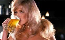Proč se v české kotlině začalo pít pivo?