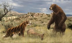 Čtyřmetrový medvěd? I takový se proháněl po Zemi…