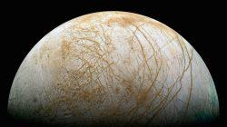 Mimozemský život: realita nebo čekání na Godota?