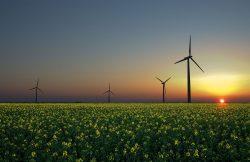 Do obnovitelných zdrojů se nejvíce investuje v Číně a Indii