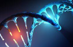 Jak předcházet mutacím genů?