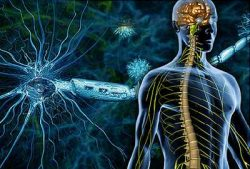 Včera, dnes a zítra: Roztroušená skleróza