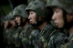 Nemilosrdně proti sršňům! Čínská armáda likviduje hmyz plamenomety