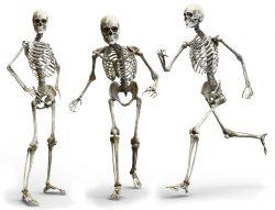 Osteoporóza přichází nenápadně