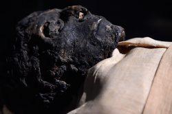 Objevená mumie vypovídá o historii egyptské mumifikace
