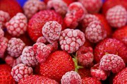 Ochutnáme jahody a maliny bez virů?
