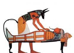 Katakomby obsahovaly osm milionů psích mumií