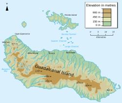 Češi objevili na Guadalcanalu nové mravence
