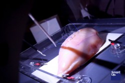 Medici si postavili laparoskopické trenažéry
