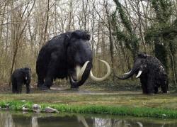 V době ledové převládal v Evropě genofond lovců mamutů z Dolních Věstonic