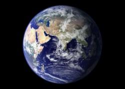 Začalo šesté masové vymírání druhů