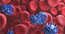 Přírodní bílkovinou proti HIV