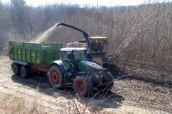 Vědci zjišťovali, jak lépe využít potenciál biomasy