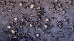 Kde se odehrála jedna z největších bitev doby bronzové?