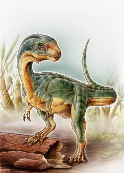Tyrannosaurus rex měl vegetariánského příbuzného