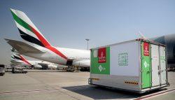 Jak ochránit netrvanlivé zboží během letecké přepravy?