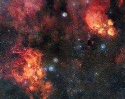 Setkání kočky kosmické s humrem nebeským