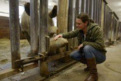 V Kanadě měl premiéru dokument o nejohroženějších zvířatech planety