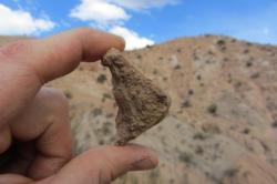 Andské Altiplano bylo před 13 miliony lety mnohem níž