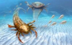 VAmerice objevili fosilii obřího mořského škorpióna