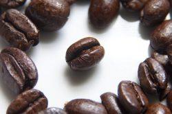 Vědci sekvencovali genom kávovníku arabského