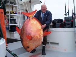 Vědci objevili první teplokrevnou rybu