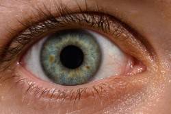 Oslepnutí po metanolu není nevratné