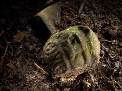 Jihoamerický prales vydal neznámou civilizaci