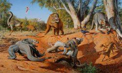 Za vymření australské megafauny mohou lidé