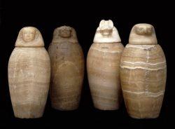 První mumie s nemocnými ledvinami