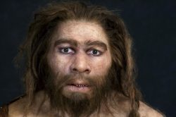 Neandertálci používali antibiotika