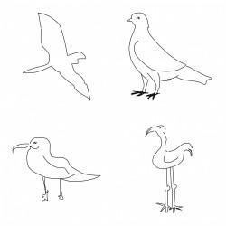 Nový počítačový program rozeznává kresby lépe než člověk!